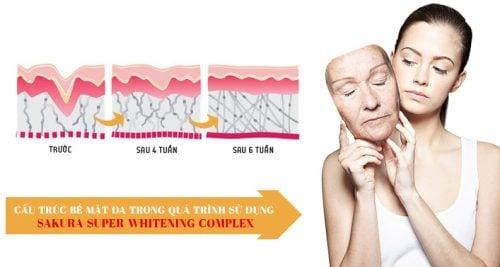 Kem chống lão hóa dưỡng trắng da Sakura Super Whitening Complex 2