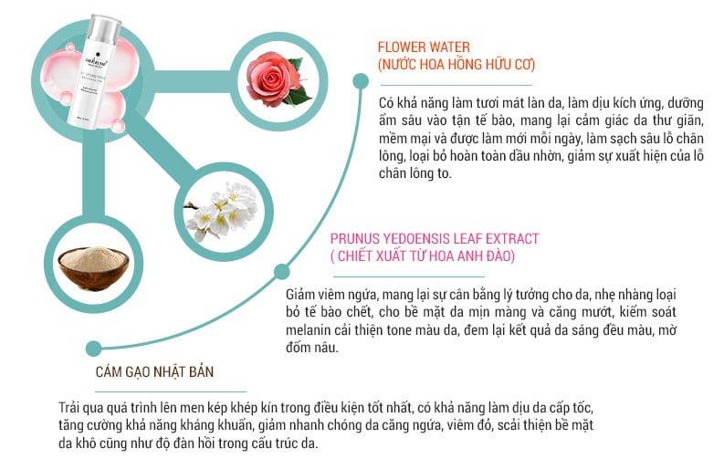 Sakura Balancing Toner an toàn với chiết xuất tự nhiên