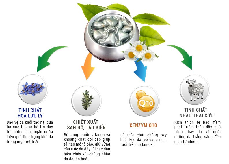 Serum trắng da chống lão hóa Sakura Placenta COQ10 2