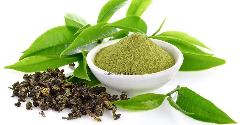 Cách trị mụn đầu đen bằng trà xanh